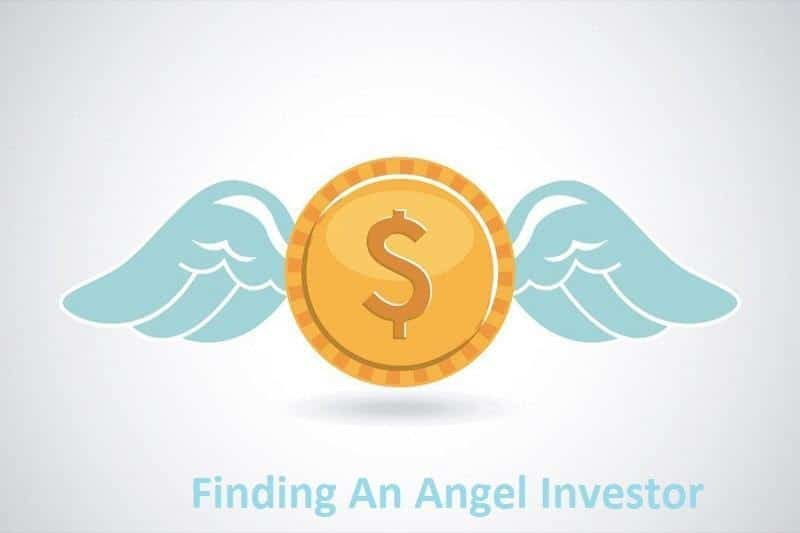 finding and angel ivestor